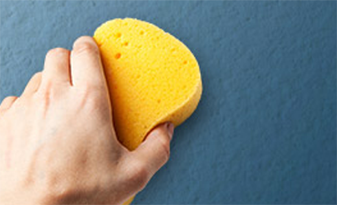 Person's hand holding a sponge washing a blue wall