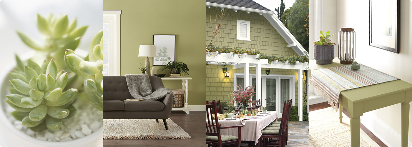Home Color Trends 2020.Colour Trends 2020 Colour Of The Year And Palettes Behr