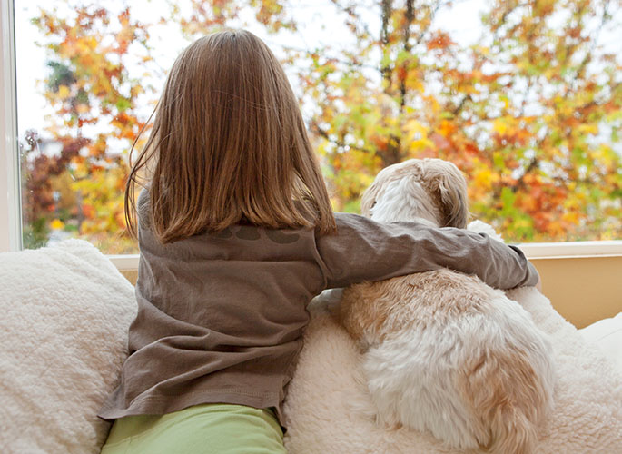 A young girl with her dog looking outside at the fall foliage.